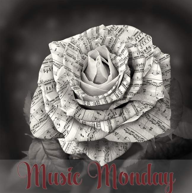 Beautiful black and white rose with note on the petals